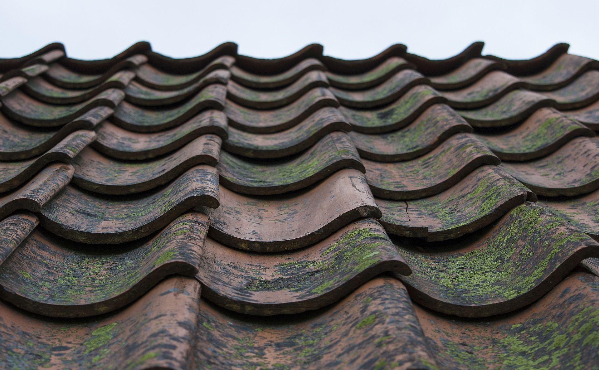 Wybór optymalnego pokrycia dachowego