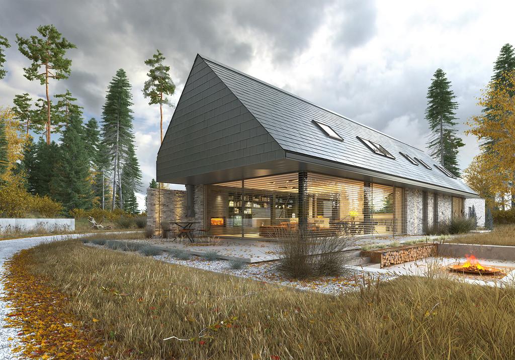 Projekt domu Odważny 1