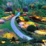 Kostka, płyta, ażur, drewno – jaką ścieżkę wybrać do ogrodu?