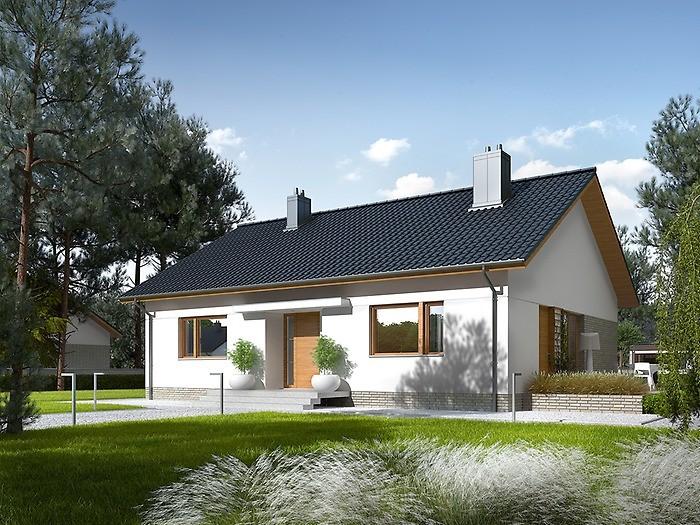 Projekt domu Swen II